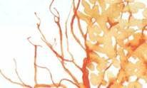 Как нарисовать дерево соломинкой