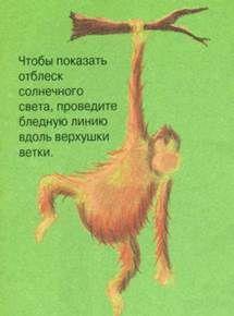 Длинноволосый орангутанг